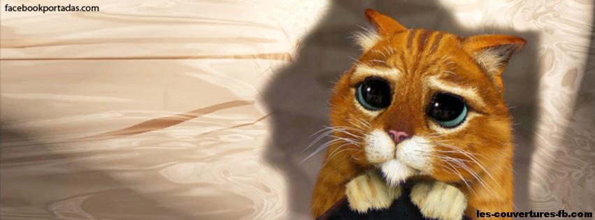 filn erotici chat libere con foto