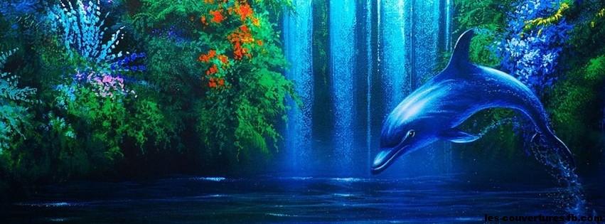 Dessin de dauphin photo de couverture facebook - Jeux gratuit de dofin ...