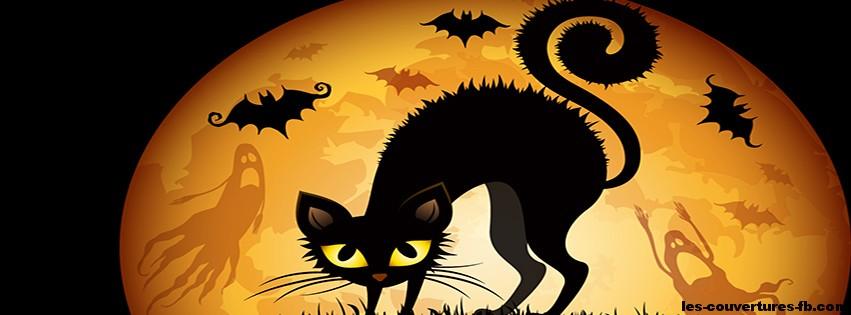 chat noir dans la pleine lune d 39 halloween couverture. Black Bedroom Furniture Sets. Home Design Ideas